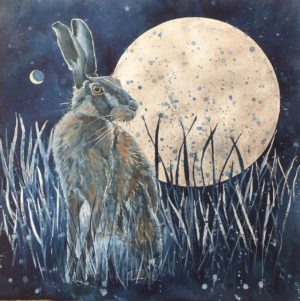 rabbit and the night sky